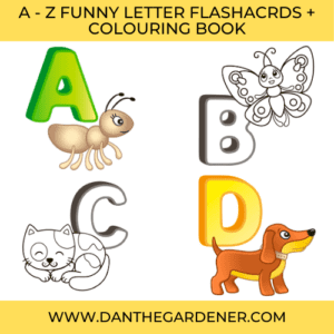 A-Z Funny Letter Flashcards